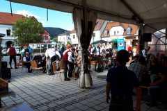 Musikantenkirtag_Dorffest (113)
