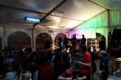 Musikantenkirtag_Dorffest (118)