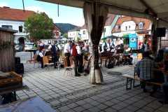 Musikantenkirtag_Dorffest (12)