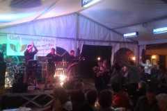 Musikantenkirtag_Dorffest (6)