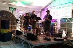 Musikantenkirtag_Dorffest (87)