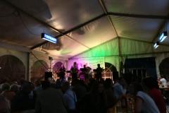 Musikantenkirtag_Dorffest (11)