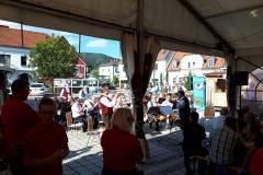 Musikantenkirtag_Dorffest (2)