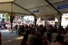 Musikantenkirtag_Dorffest (3)
