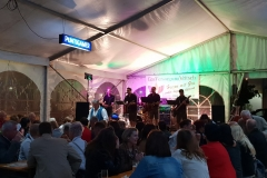Musikantenkirtag_Dorffest (82)