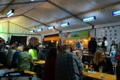 Musikantenkirtag_Dorffest (91)